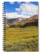 Mount Bierstadt In The Arapahoe National Forest Spiral Notebook