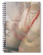 Pizzazz Spiral Notebook