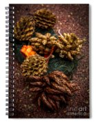 Potpourri Spiral Notebook