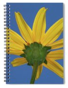 Wild Sunflower Stony Brook New York  Spiral Notebook