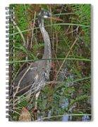 100- Great Blue Heron Spiral Notebook