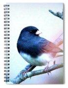 1052 - Junco Spiral Notebook