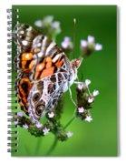 1074- Butterfly Spiral Notebook