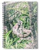 10773 Cotton Topped Tamarin Spiral Notebook
