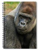 10898 Gorilla Spiral Notebook