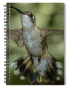 Female Ruby-throated Hummingbird Spiral Notebook