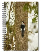 Great Spotted Woodpecker Spiral Notebook