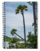 Palmetto Forest On Hunting Island Beach Spiral Notebook