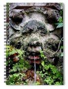 Public Fountain In Palma Majorca Spain Spiral Notebook