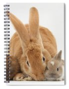 Rabbits Spiral Notebook