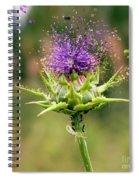 Silybum Eburneum Milk Thistle Spiral Notebook