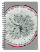 11257 The Food We Eat - Radish Spiral Notebook