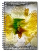 11264 Flower Abstract Series 02 #17 - Carnation Spiral Notebook