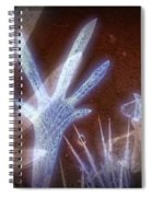 11288 Ghost Of Lost Souls Series 07-01 Spiral Notebook