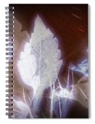 11291 Ghost Of Lost Souls Series 07-04 Spiral Notebook