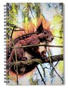 11451 Red Squirrel Sketch Spiral Notebook