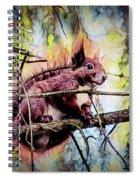 11452 Red Squirrel Sketch Square Spiral Notebook