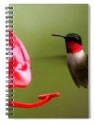 1164 - Hummingbird Spiral Notebook