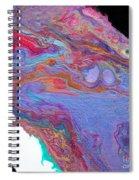 #1223 Spiral Notebook