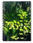 Jungle 123 Spiral Notebook