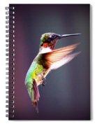 1257-006 - Ruby-throated Hummingbird Spiral Notebook