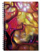 13 Abstract Japanese Maple Tree Spiral Notebook