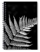 Fern Close-up  Spiral Notebook