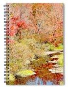 Stream In Autumn, Pocono Mountains, Pennsylvania Spiral Notebook