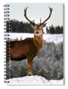 Red Deer Stag Spiral Notebook