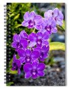 Orchids Kauai Spiral Notebook
