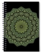 15 Symmetry Celery Bulb Spiral Notebook
