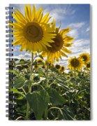 150403p078 Spiral Notebook