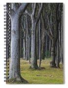 150403p254 Spiral Notebook