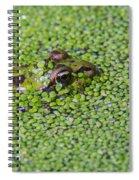 150403p322 Spiral Notebook