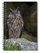 150501p123 Spiral Notebook