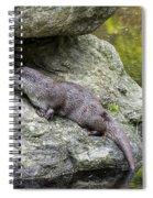 150501p133 Spiral Notebook