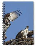 151105p350 Spiral Notebook