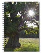 151124p105 Spiral Notebook