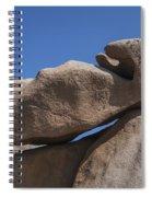 151124p159 Spiral Notebook
