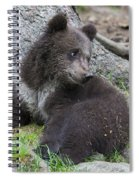 151207p127 Spiral Notebook