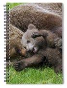 151207p136 Spiral Notebook