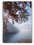 151207p156 Spiral Notebook