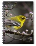 1574 - Pine Warbler Spiral Notebook