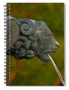16- Fountain Spiral Notebook