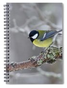 Great Tit Spiral Notebook