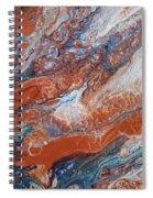 #163 Spiral Notebook