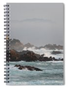 17 Mile Drive - Monterey Spiral Notebook