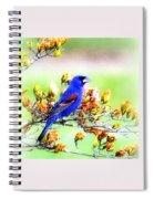1795 - Blue Grosbeak Spiral Notebook