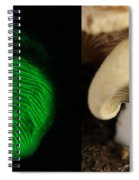 Luminescent Mushroom, Panellus Stipticus Spiral Notebook