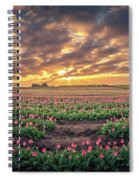 180 Degree View Of Sunrise Over Tulip Field Spiral Notebook
